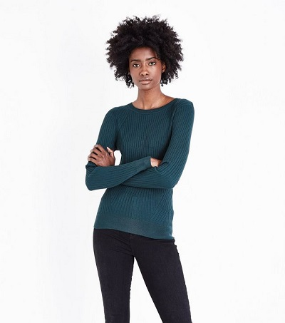 dark-green-panelled-rib-jumperNL - httpwww.newlook.comukwomensclothingknitweardark-green-panelled-rib-jumperp567633038comp=Browse